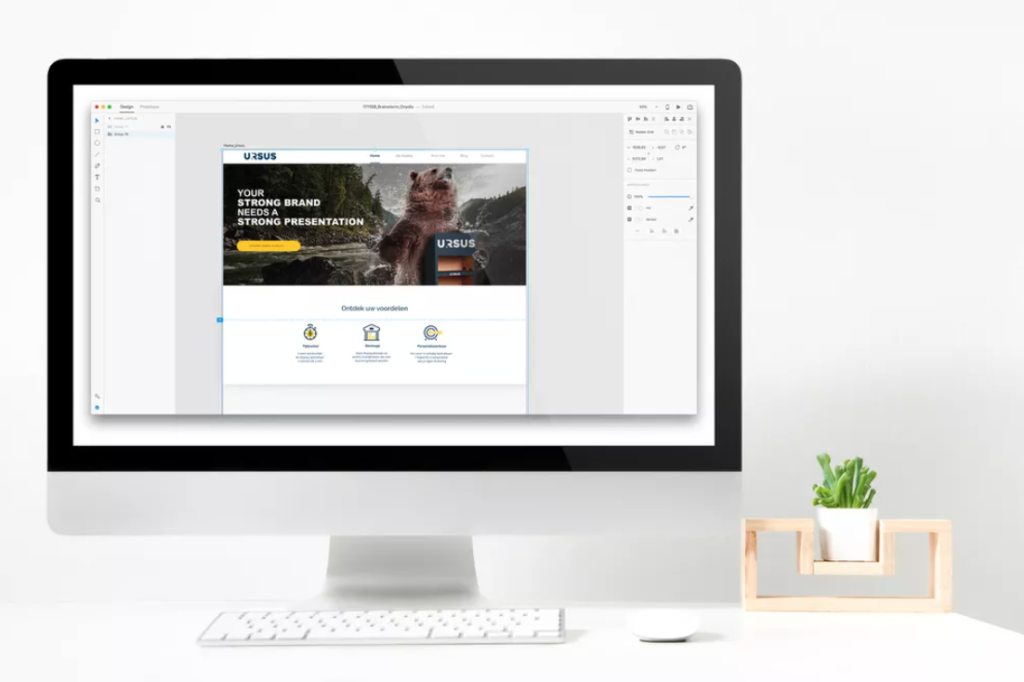 Ontwerp duidelijke homepage webdesign met Adobe XD