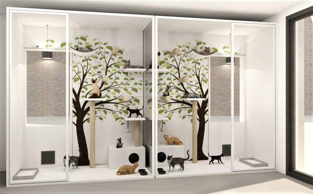 De katten dromen alvast van een nieuw project, namelijk de nieuwe kattenverblijven. Help jij het asiel hun droom waar te maken?